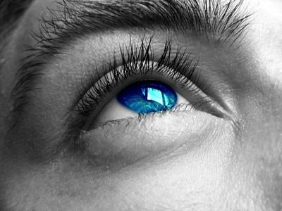 Les yeux d'un chercheur